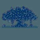 Logo der Kryptowährung Banyan Network BBN