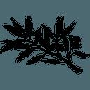 Logo der Kryptowährung Francs FRN